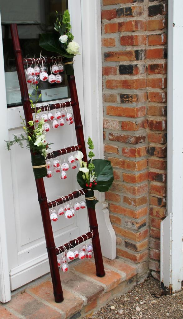 Ma tresse d co sur une chelle perch e floriane - Echelle decorative pour plantes ...