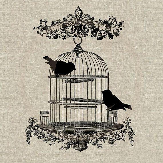 ouvrez la cage aux oiseaux floriane lemari. Black Bedroom Furniture Sets. Home Design Ideas