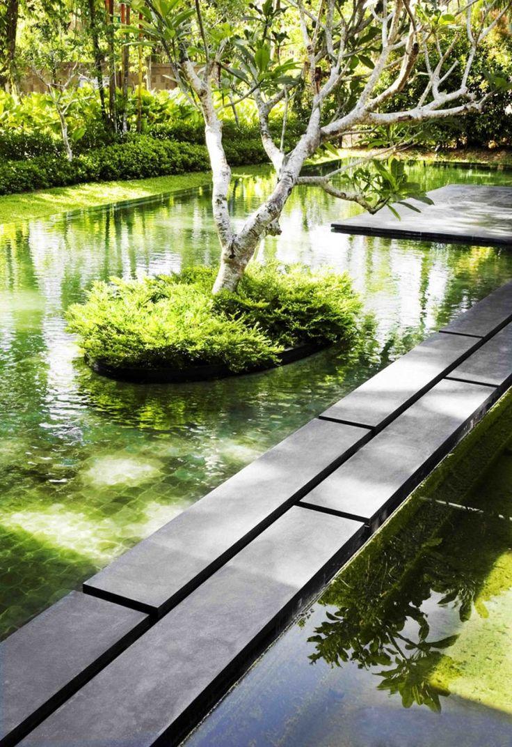 Cr Er Un Bassin Dans Son Jardin Floriane Lemari