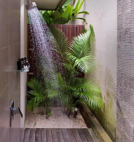 Et si on d corait la salle de bain avec des plantes for Plante pour salle de bain sombre