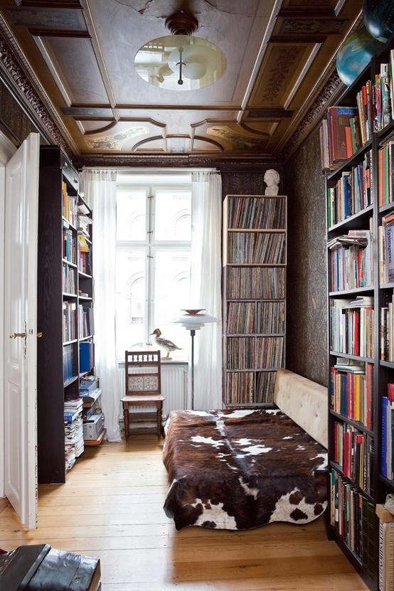 décoration chambre bibliothèque