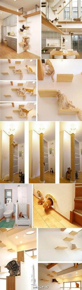 décoration animaux