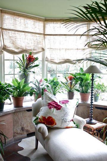 le jardin d 39 hiver un jardin dans la maison en toutes. Black Bedroom Furniture Sets. Home Design Ideas