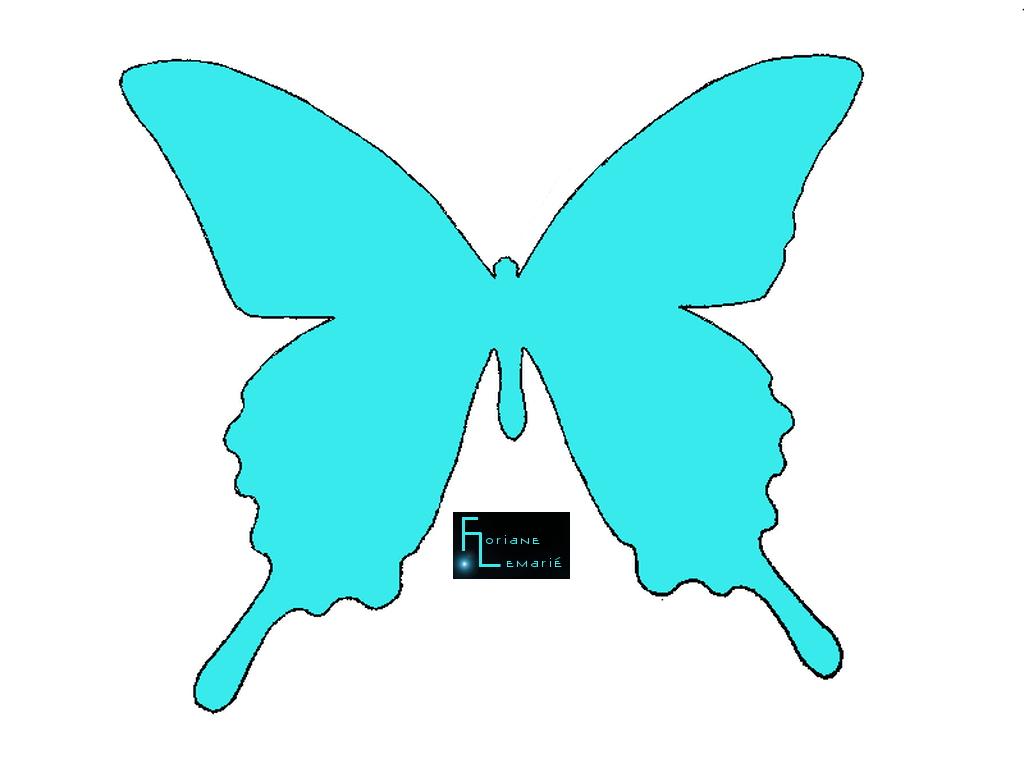 DIY papillons