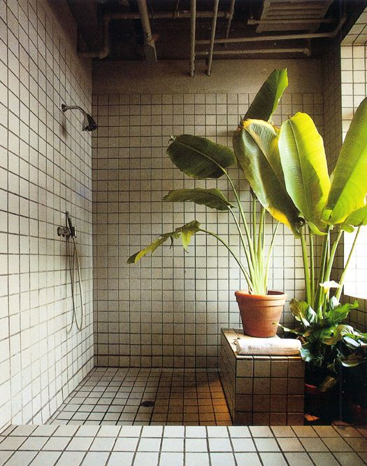 Et Si On Decorait La Salle De Bain Avec Des Plantes Floriane Lemarie