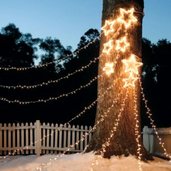 Premier Outdoor Christmas Lights