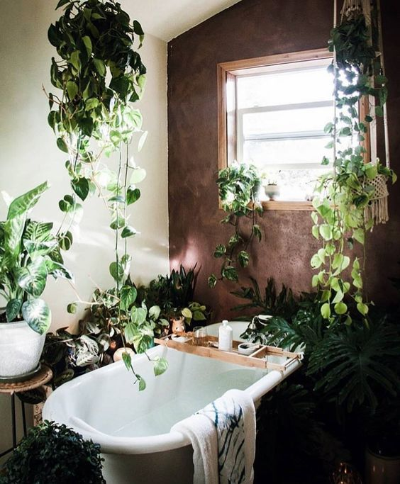ambiance jungle dans la salle de bain floriane lemari. Black Bedroom Furniture Sets. Home Design Ideas