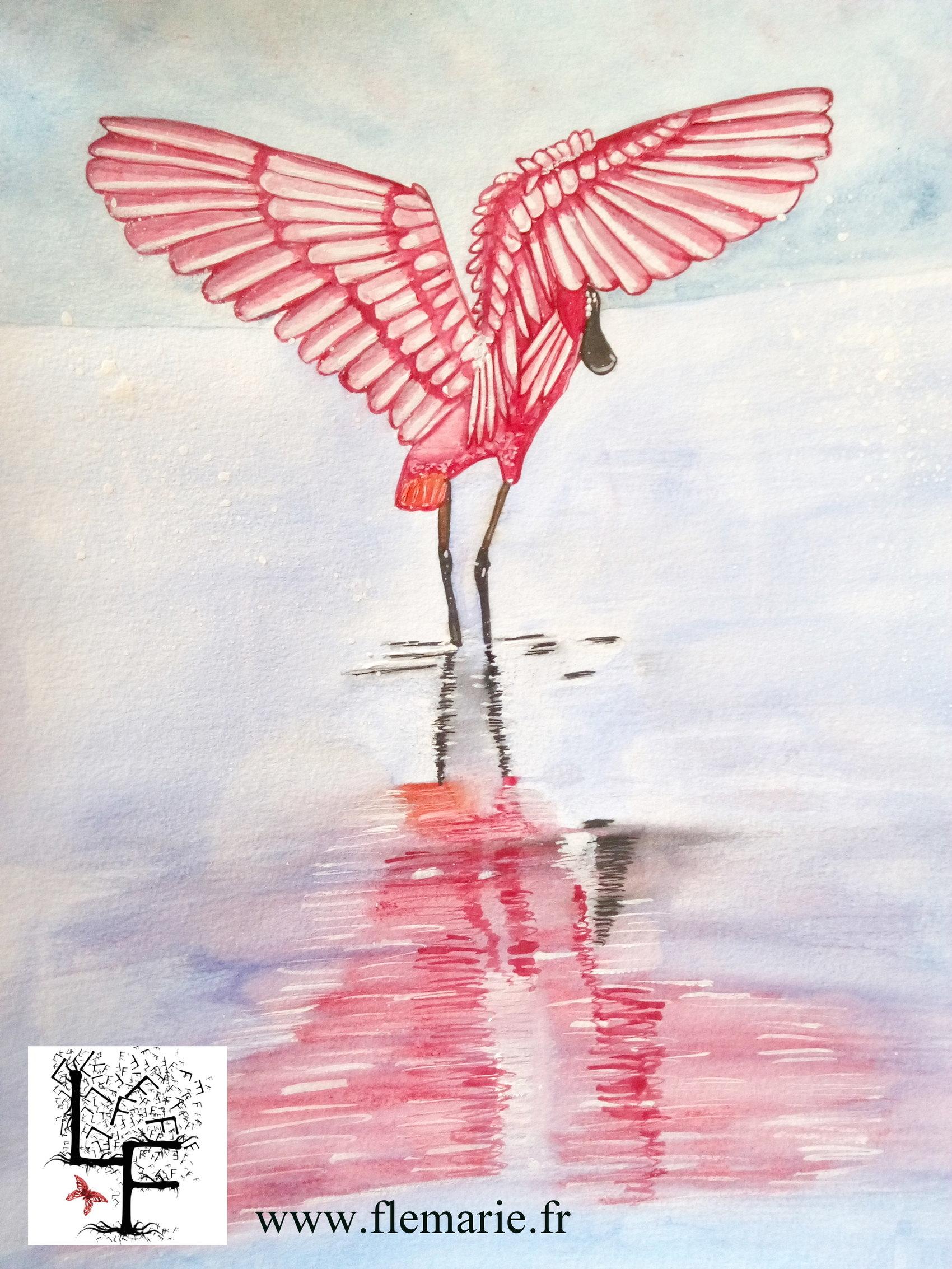 Le flamant rose  Aquarelle et gouache sur papier