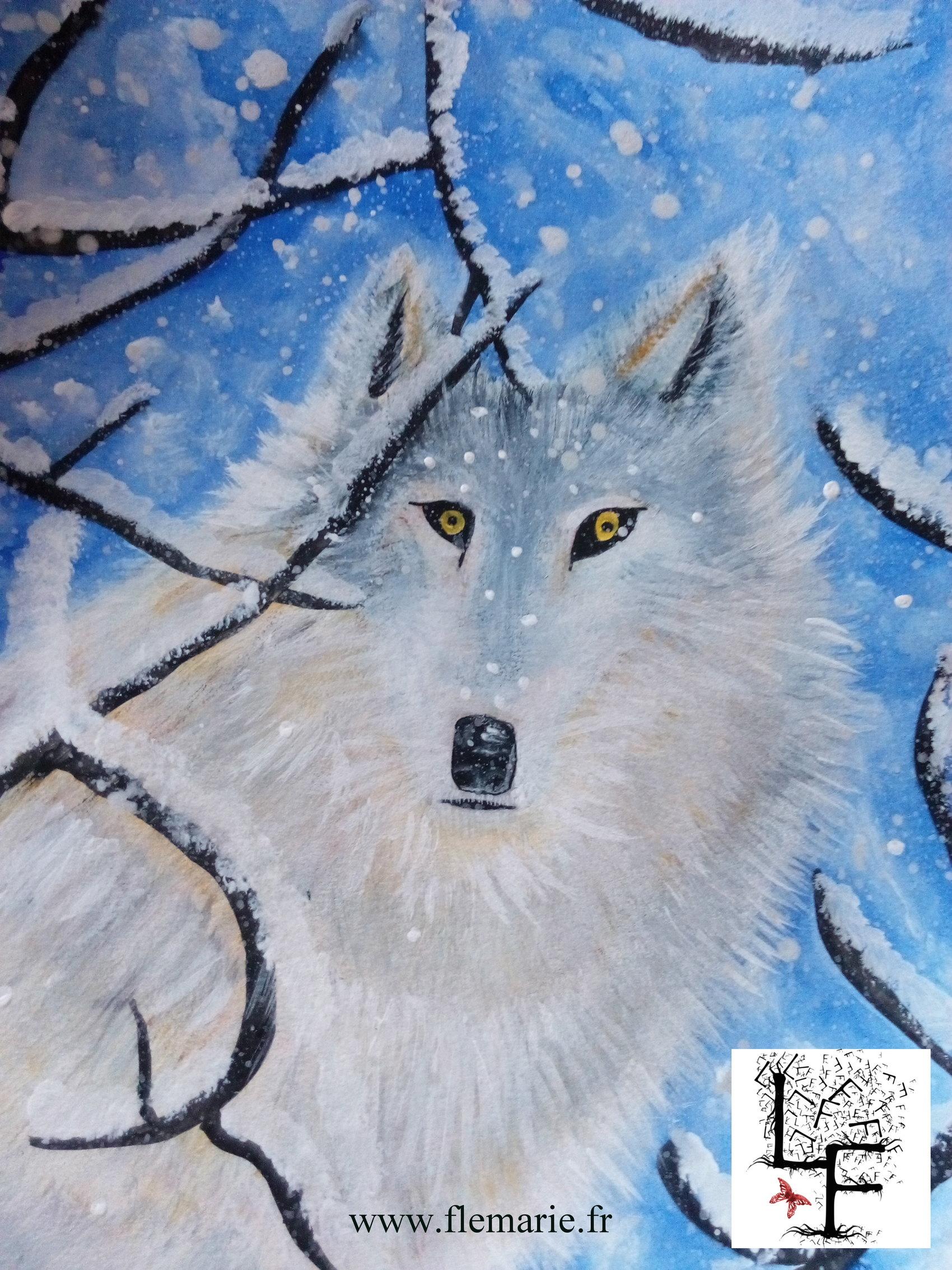 Loup des neiges  Aquarelle et gouache sur papier